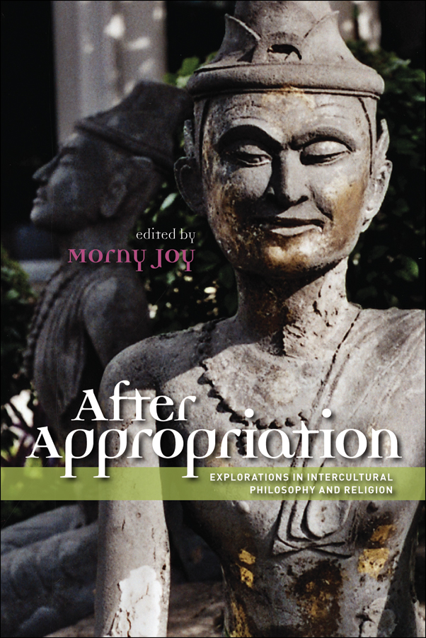 Book cover image for: After Appropriation: Explorations in Intercultural Philosophy and Religion