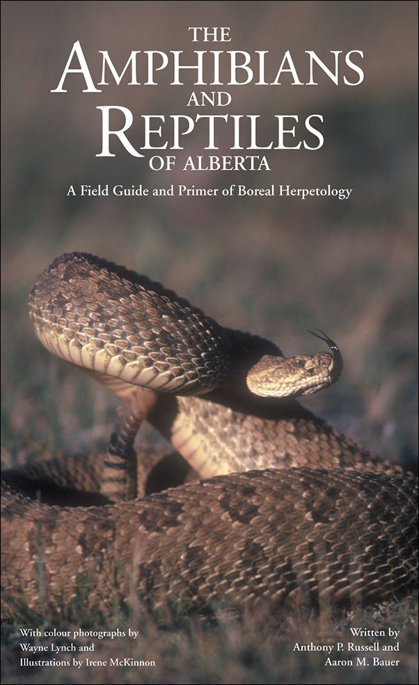 Book cover image for: Amphibians and Reptiles of Alberta: A Field Guide and Primer of Boreal Herpetology