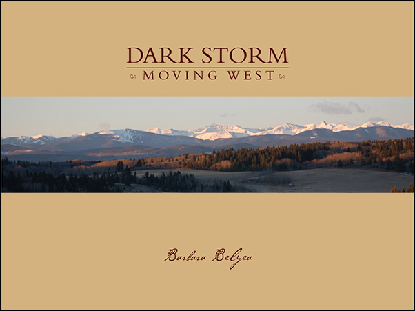 Book cover image for: Dark Storm Moving West