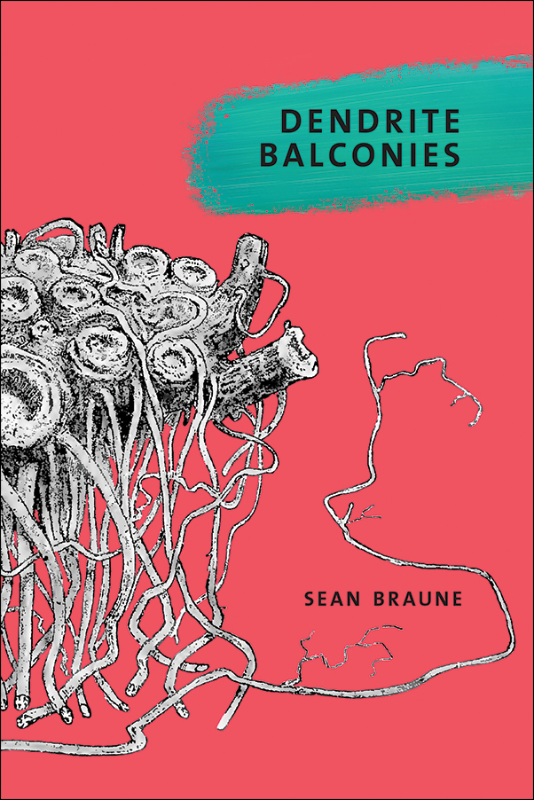 Book cover image for: Dendrite Balconies