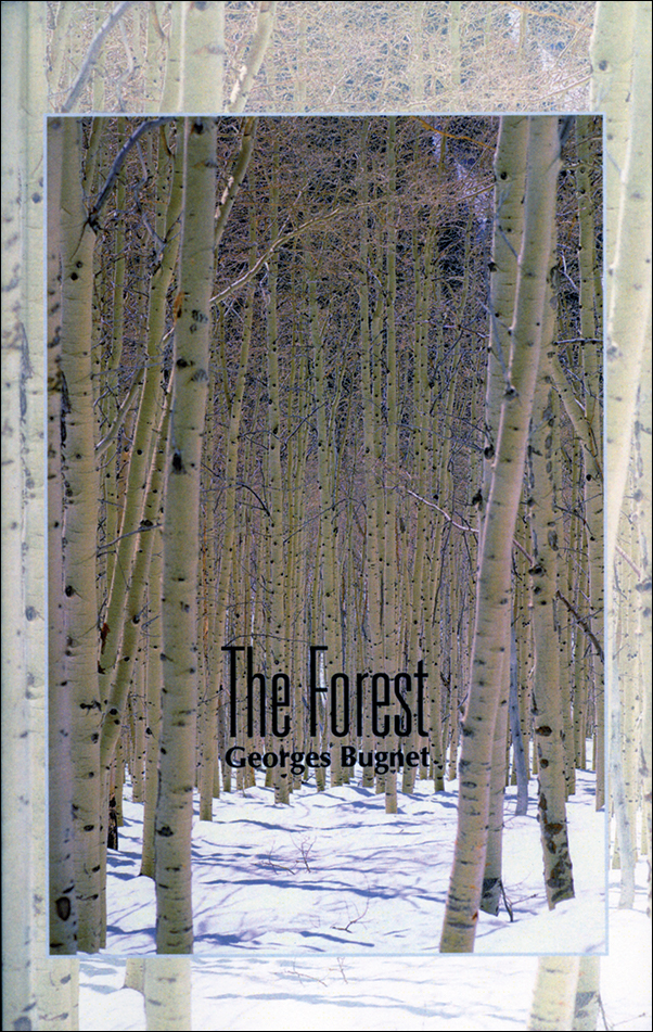 Book cover image for: The Forest