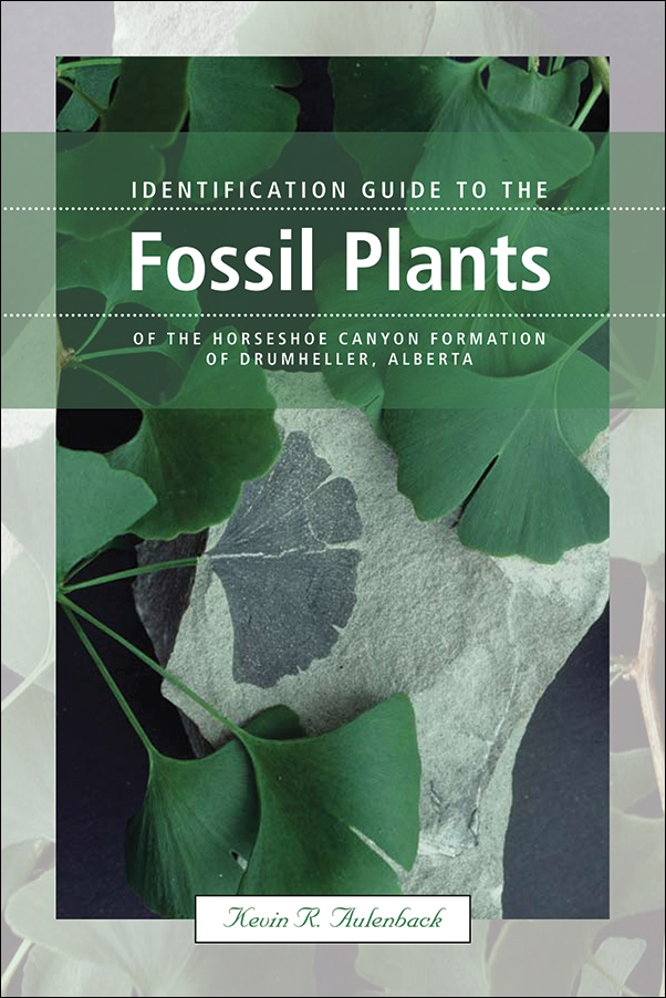 Book cover image for: Identification Guide to the Fossil Plants of the Horseshoe Canyon Formation of Drumheller, Alberta