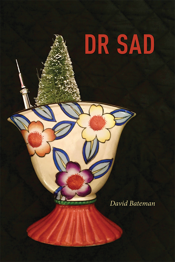 An image of the DR SAD book cover