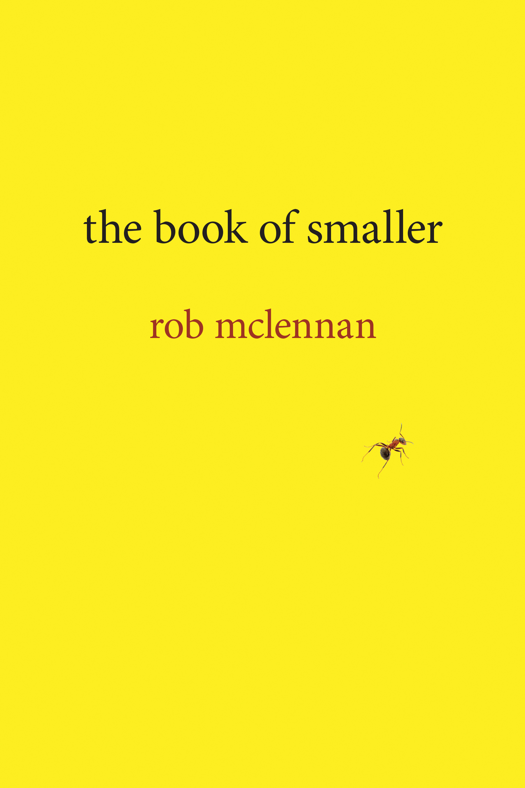 Book cover image for: book of smaller